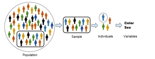 Population_Sample_Individuals_Variables